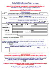 Downlaodable Donation Form In PDF Format